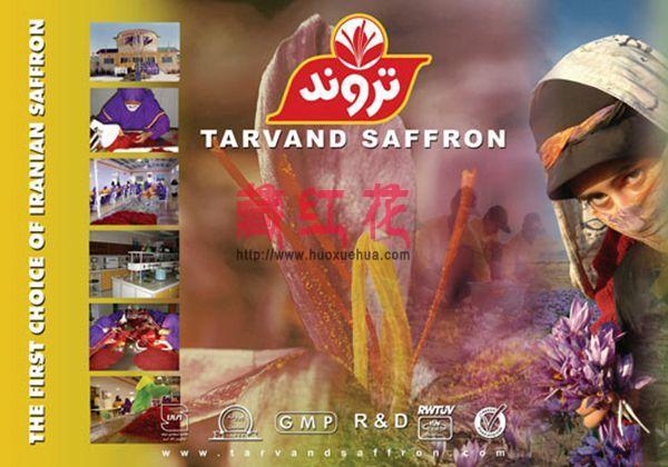 正宗的伊朗藏红花品牌介绍 藏红花等级划分