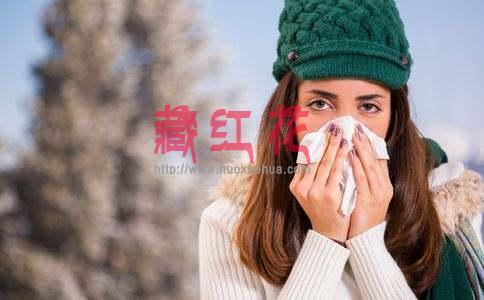 藏红花对改善冬季手脚冰凉、月经不调具有显著作用